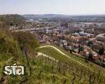 V Mariboru znova humanitarni policijski tek na Kalvarijo