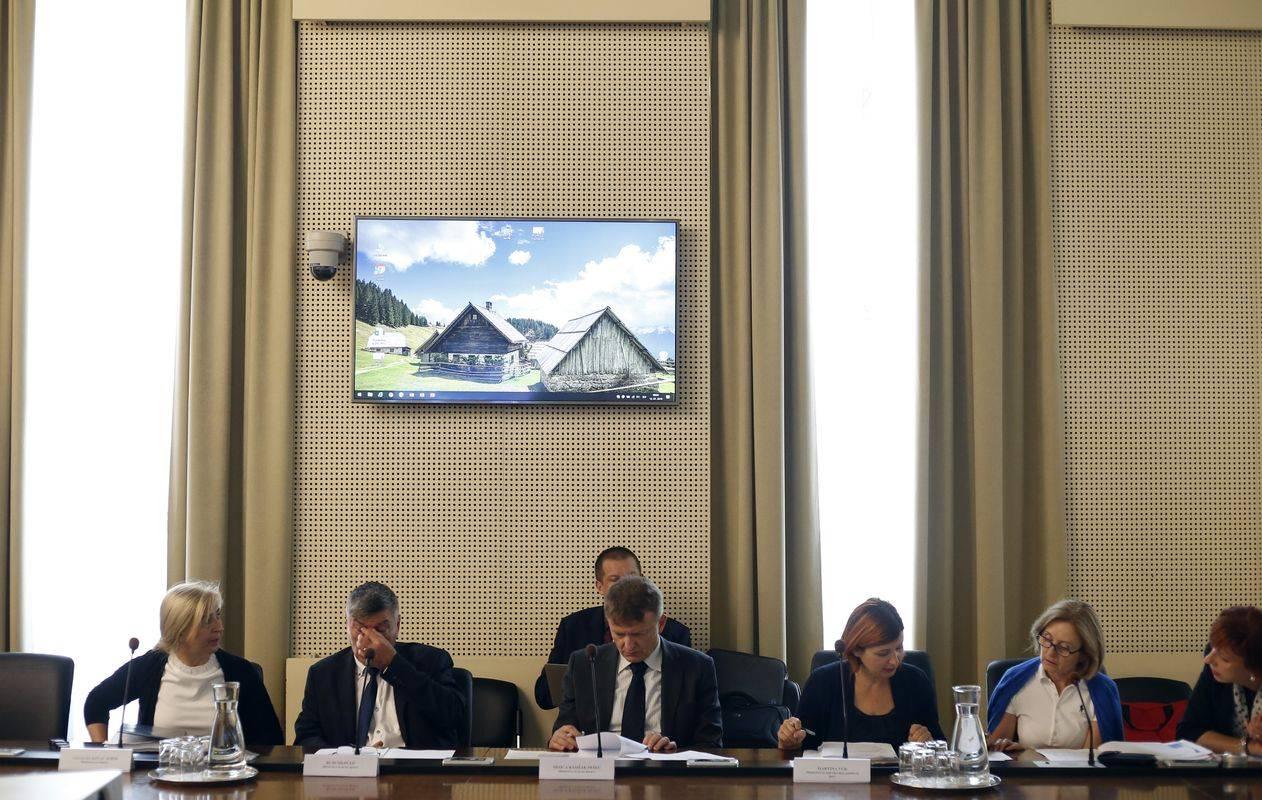 Na seji ESS-ja. Foto: BoBo/Borut Živulović
