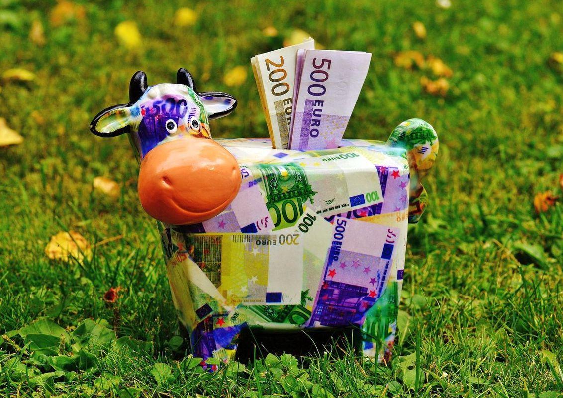 V proračunu se je v 11 mesecih nabralo več kot 300 milijonov evrov presežka. Foto: Pixabay
