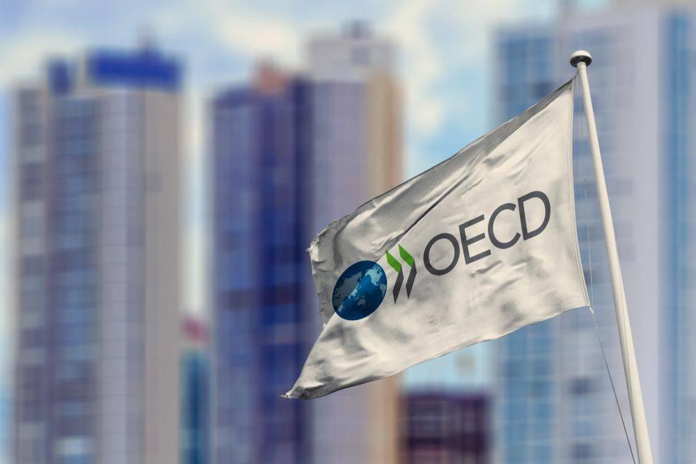 OECD združuje 36 gospodarsko razvitih držav, ki oblikujejo svetovne standarde in načela v gospodarskih in razvojnih politikah. Foto: Shutterstock