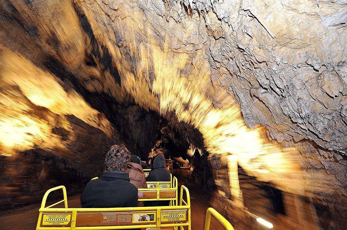 Zaradi koronakrize imajo v Postojnski jami 83-odstotni padec obiska. Foto: BoBo
