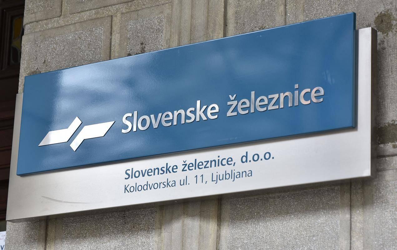 Bo SŽ v navezi s Čehi ustvaril vodilno logistično podjetje za JV Evropo? Foto: BoBo